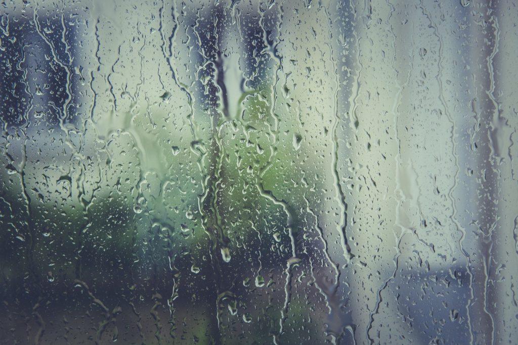 Comment lutter contre l'humidité en entreprise ?